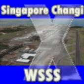 فرودگاه  سنگاپور